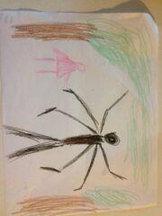 Cheyenne's drawing