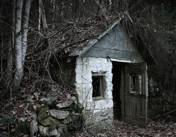 The house deep in the woods creepypasta wiki fandom for Old deep house
