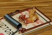 Mouse-trap-with-peanut-butter