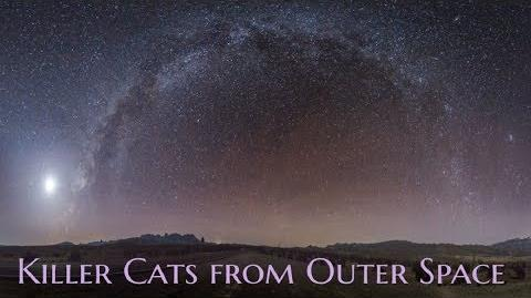 ''Feline'' by Killahawke1 TERRIFYING OUTER SPACE STORY