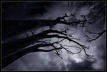 Darkness-0