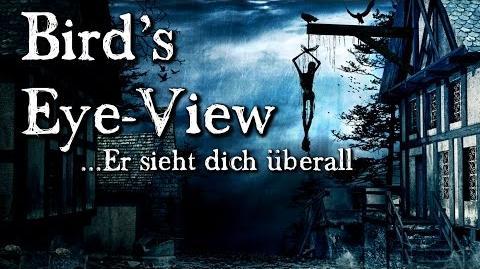 Bird's Eye-View Er sieht dich überall (Hörbuch deutsch)