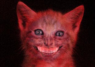 Smilecat