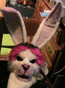 Bunny-mask-edited