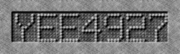 Yee4927