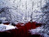SCP-354: Der Blutsee