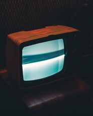 Category:Television