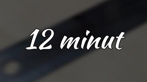 12 minut