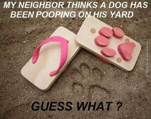 Yard pooping
