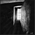 Window-0.jpg