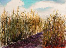 Road-through-corn-john-williams