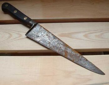 Holder of the Mind Knife