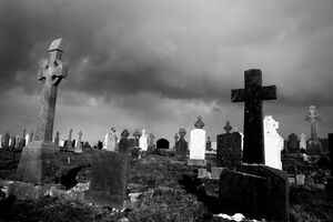 Connemara graveyard II