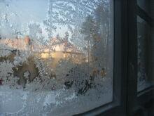 SCP-f-OIE-1 bedeckt fast das gesamte Fenster