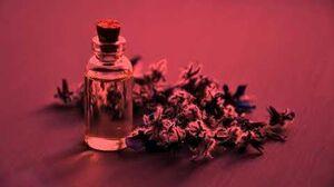 """Lavender"" by EmpyrealInvective - Creepypasta Narration by mindlessmatter"