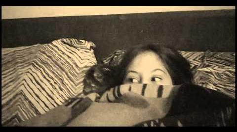 NO SOLO LOS PERROS LAMEN - CREEPY PASTA - REAL LIFE VIDEO