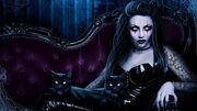 Kitty evil