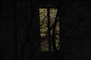 Dark window by ickyfrog-d35i5fm