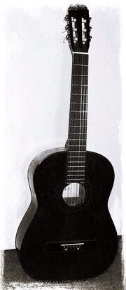 Guitar-nsh