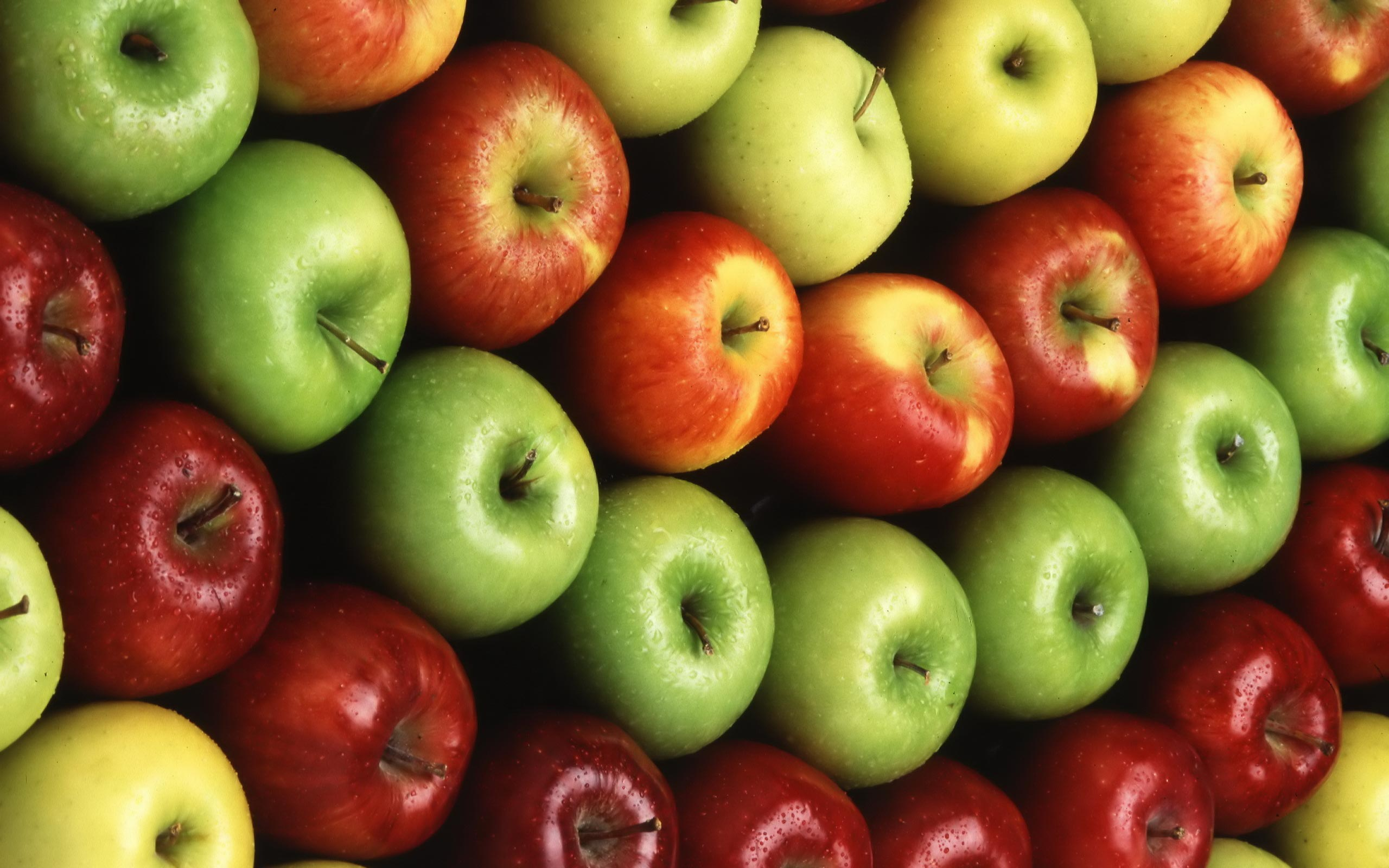 an apple a day creepypasta wiki fandom powered by wikia