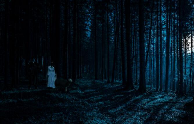 Odenwaldschaffraupriester