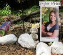 El caso de Skylar Neese