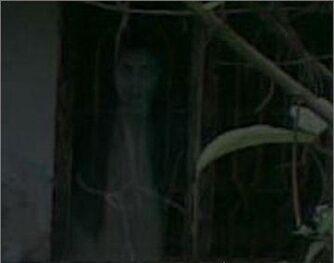 Ghost-girl-in-window-lady-dracula