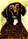 The Graying Dog