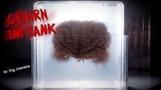 """Gehirn im Tank"" ◈ Creepypasta German ◈ Autor ♦ Big Lincoln"