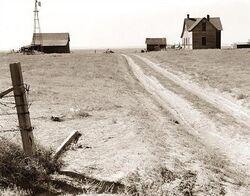 Abandoned-farm