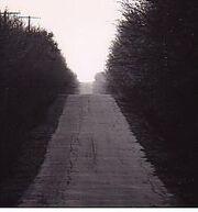 Lstr road