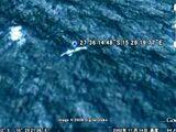 Ningen: 海の生き物