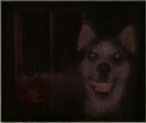 Smile Dog