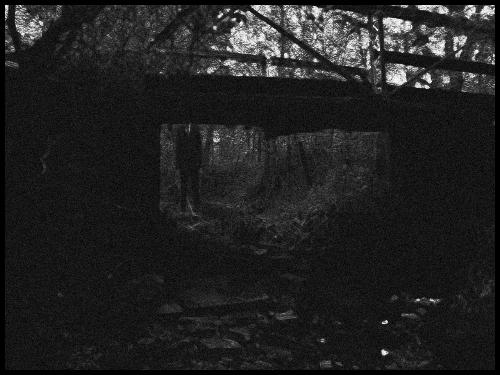 File:Slender forest 4.png