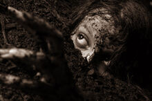 Buried alive-0