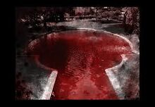 The pool of blood