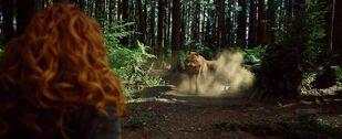 Twilight-newmoon-victoria vs wolf