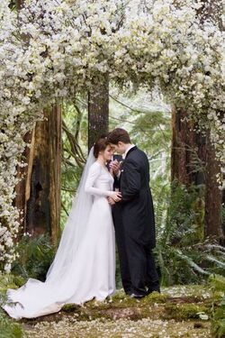 Breakingdawnwedding