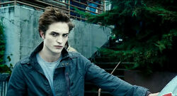 Mr Edward Cullen