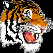 Left tiger
