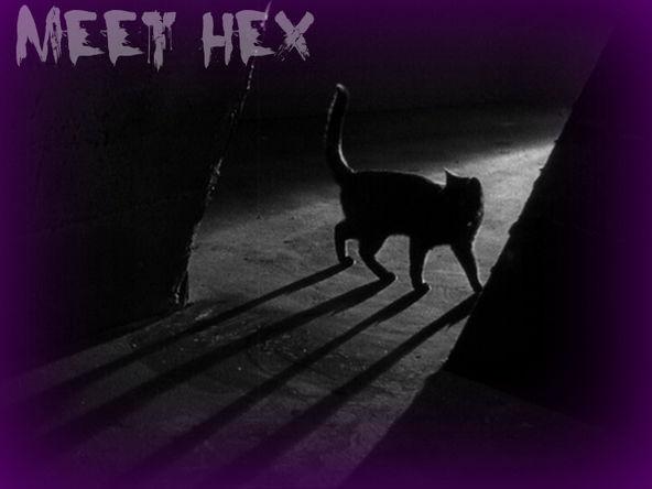 HexBanner