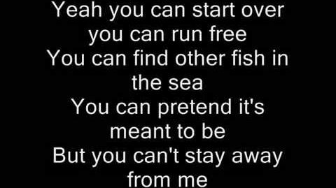 ANIMALS - MAROON 5 (LYRICS)