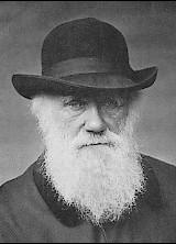 Darwin1880