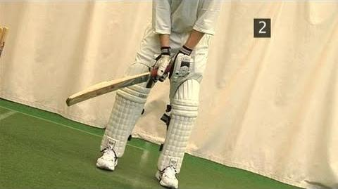 How To Grip Bats Properly