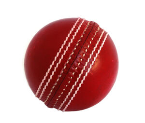 Cricket-ball (1)