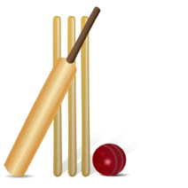 Wikia-Visualization-Main,cricketgame