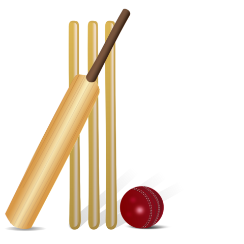 File:Wikia-Visualization-Main,cricketgame.png