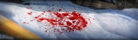 Bloodstorm3