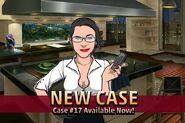 Case 17