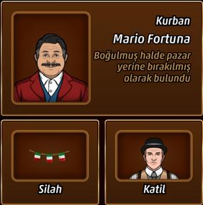 Yurttaşkanı
